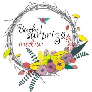 Buchet surpriză flori (MEDIU) comandă florărie online